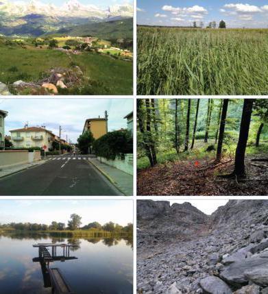 Договор безвозмездного пользования земельным участком: образец, кто может получить