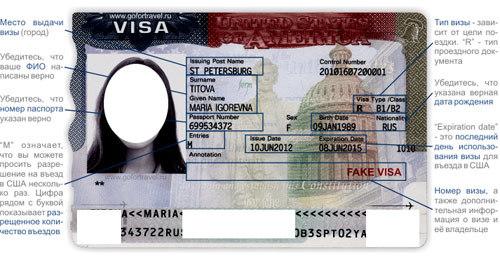 Гостевая виза в США: как оформить и получить, стоимость и другие особенности
