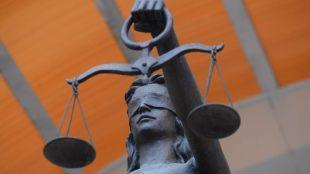 Виндикационный иск в гражданском праве: понятие и условие, срок исковой давности, куда подавать +образец
