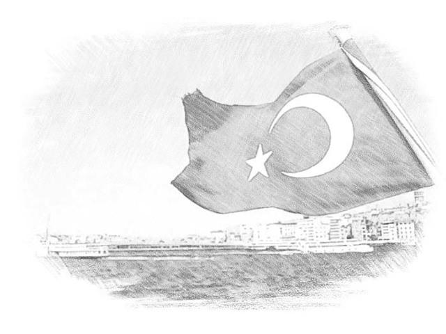 Виза в Турцию в 2020 году для россиян и других граждан: нужна ли, сколько стоит и другие нюансы