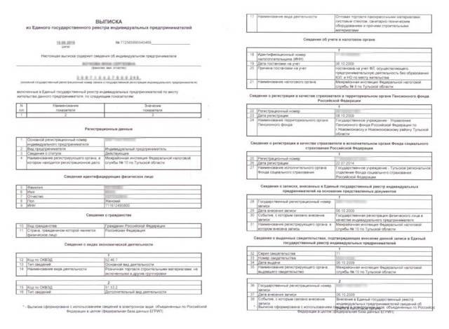 Выписка из ЕГРИП для ИП: как и где получить, как выглядит, какие сведения содержит, срок действия, порядок регистрации изменений