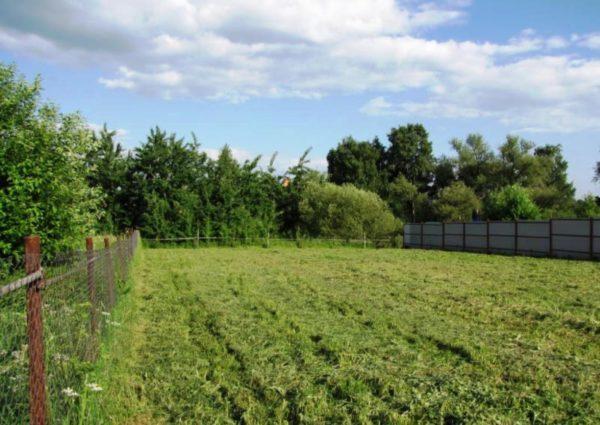 Можно ли купить земельный участок на материнский капитал: возможность и способы приобретения земли