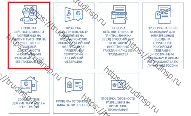 Как оформить патент на работу: как получить, как проверить — аннулирован или нет, ответственность и наказание иностранного гражданина за отсутствие